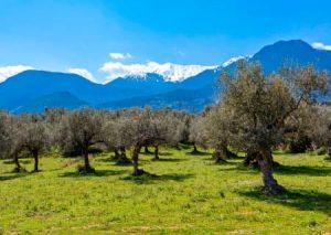 Peloponnese scenery - Luxury Vacations & Honeymoons