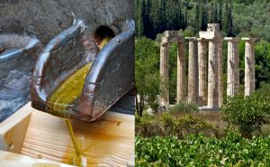 best olive oil - Best Greece Food & Wine Tours
