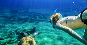 Snorkeling in the Aegean Sea - Luxury Catamaran Charters